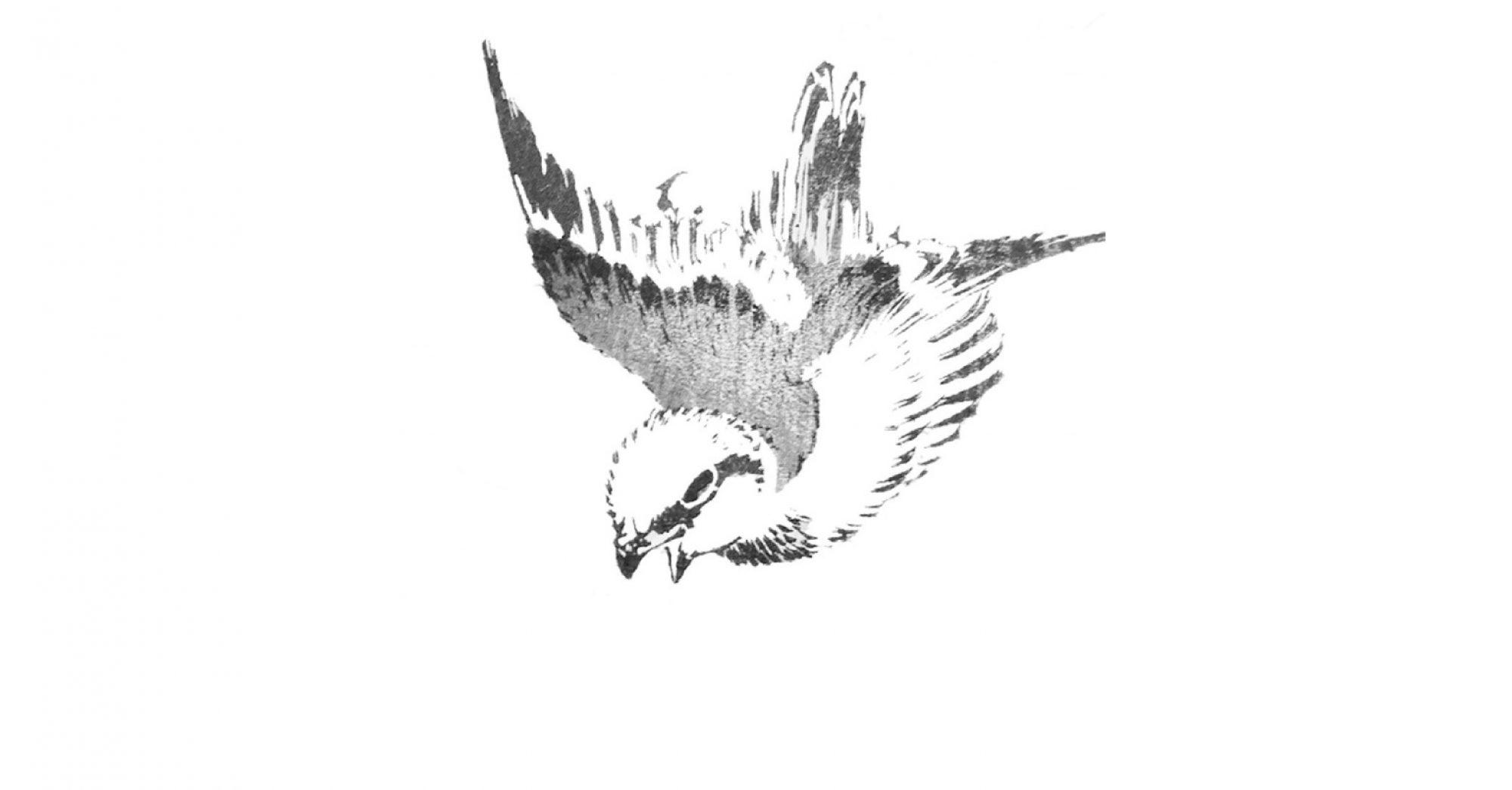 Spatzen – Eine Reihe für Poesie